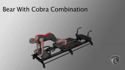 Bear With Cobra Combination