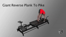 Giant Reverse Plank To Pike