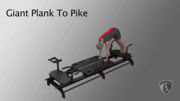 Giant Plank To Pike