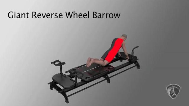 Giant Reverse Wheel Barrow