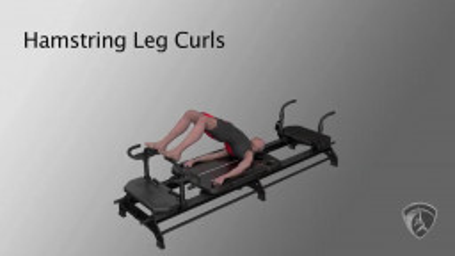 Hamstring Leg Curls