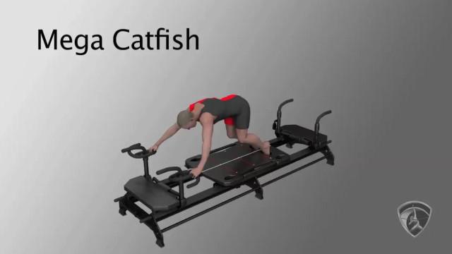 Mega Catfish