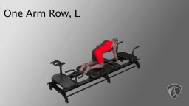 One Arm Row, L