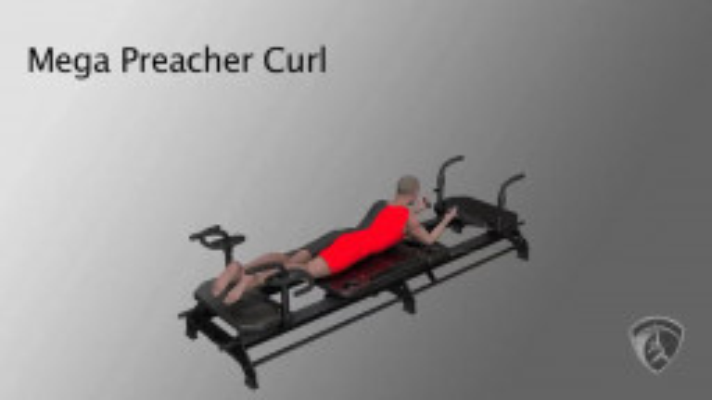 Mega Preacher Curl