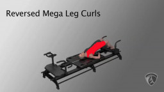 Reverse Mega Leg Curls