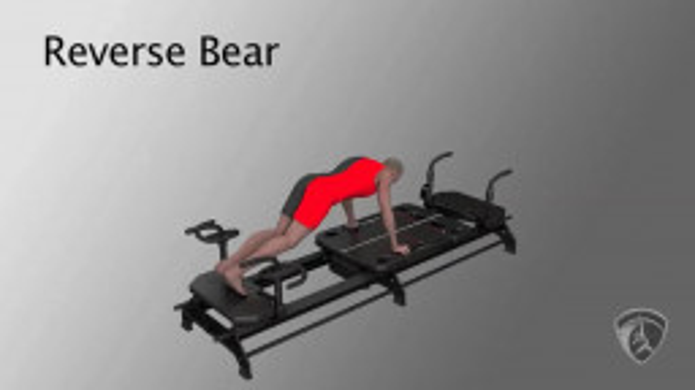 Reverse Bear