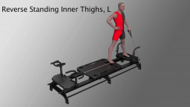 Reverse Standing Inner Thighs, L