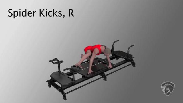 Spider Kicks, R