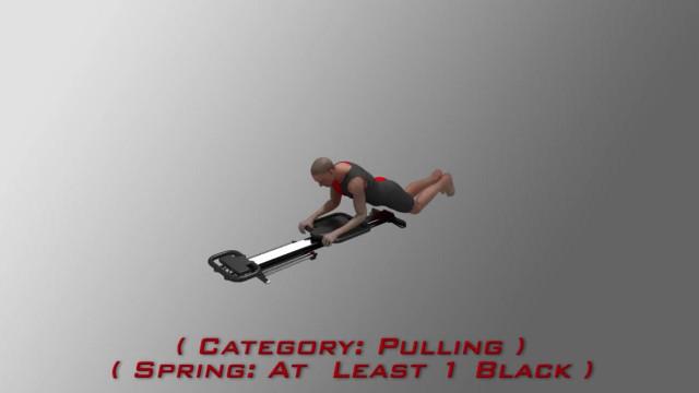 KneelingCobra3