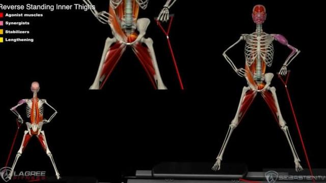Reverse Standing Inner Thighs
