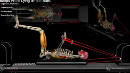 Triceps Press Lying on the Back