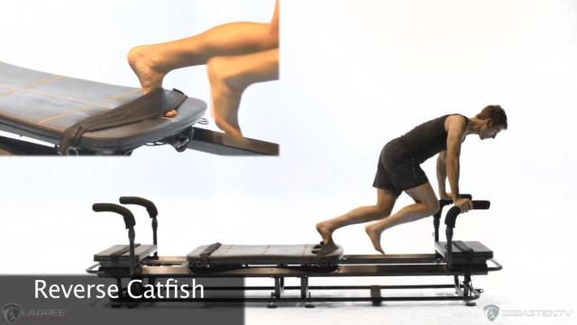 Reverse Catfish
