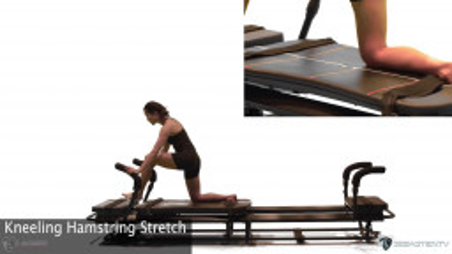 Kneeling Hamstring Stretch