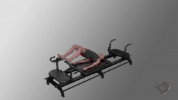 Leg Press in Bridge Position