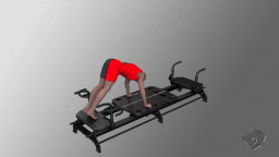 Reverse Plank to Pike